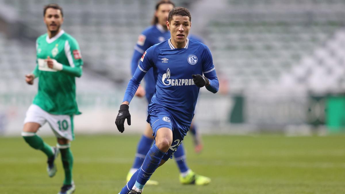 Letzte Transfernews FC Schalke 04