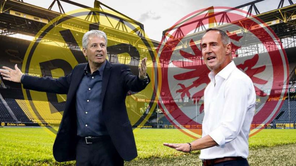 Duell an der Seitenlinie: Lucien Favre gegen Adi Hütter