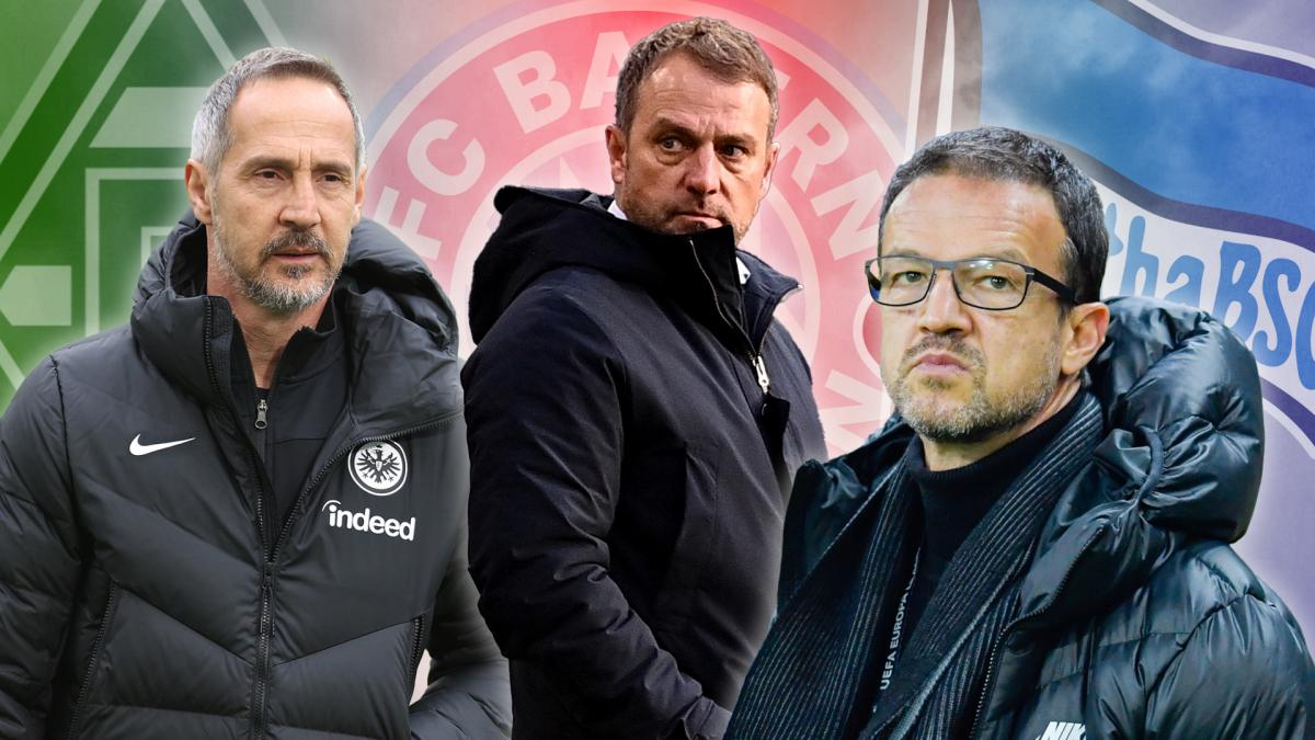 Letzte Transfernews SC Freiburg