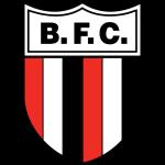Botafogo FC Ribeirão Preto B