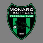 Monaro Panthers FC