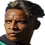 Matheus Fellipe Costa Pereira