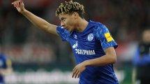 Sechs auslaufende Verträge: So plant Schalke