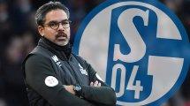 Schalke trainiert daheim