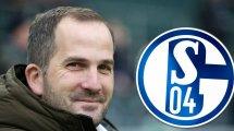Entscheidung gefallen: Baum übernimmt auf Schalke