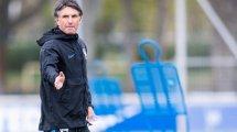 Hertha: Labbadia kommentiert McKennie-Berichte