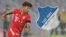 Hoffenheim holt Bayerns Richards per Leihe