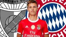 Bayern holt Benfica-Juwel Dantas
