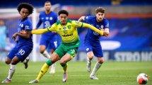 Newcastle verpflichtet Lewis