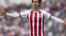 Vier Klubs wollen BVB-Flirt Macías