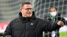 """Eberl: """"Sportdirektoren sollten keine Klauseln haben"""""""
