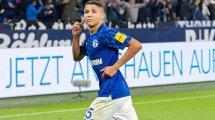 Offiziell: Schalke verlängert mit Harit