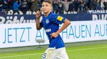 Topklubs melden sich bei Harit – aber Schalke darf hoffen