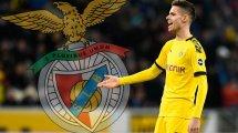 Weigl-Debüt bei Benfica: Wenig Glanz gegen den Tabellenletzten