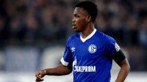 Schalke 04: Matondo kämpft sich zurück ins Team