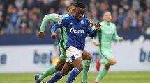 Schalke: Matondo zieht Zwischenfazit