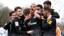 Englands Topklubs jagen zwei Schalke-Talente