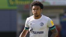 Schalke: England-Quartett lockt McKennie