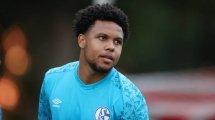 Schalke verhandelt McKennie-Transfer | Neuer Bentaleb-Interessent