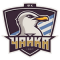 FC Chayka Kyiv-Sviatoshyn Raion