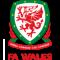 Wales U21