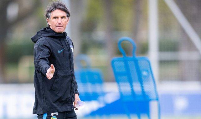 Bruno Labbadia beim Mannschaftstraining von Hertha BSC