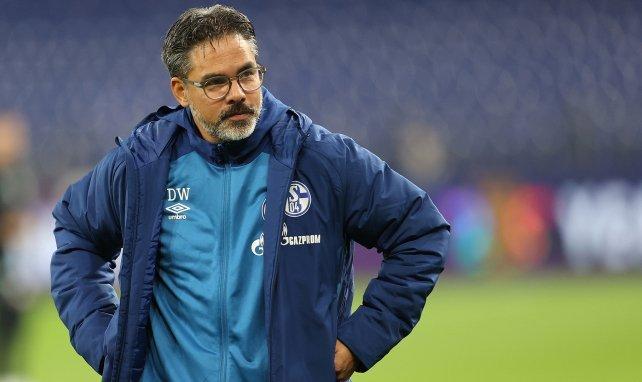 David Wagner ist nicht länger Trainer von Schalke 04