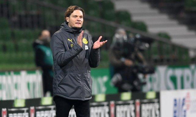 BVB-Köder: Terzic der Trainer der Zukunft?