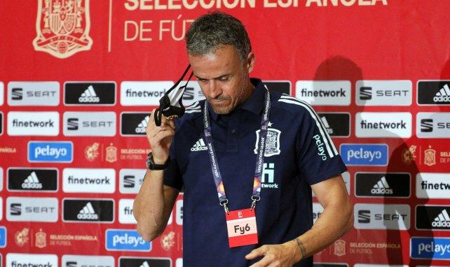 Spaniens Nationaltrainer Luis Enrique