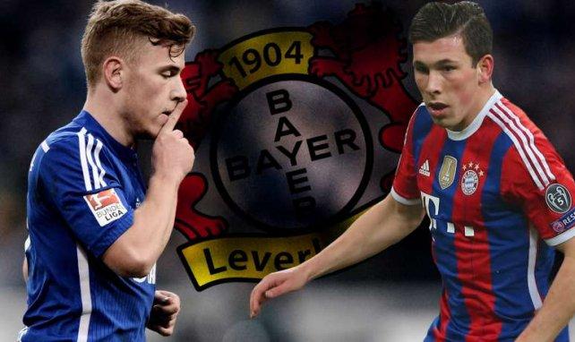 Meyer und Höjbjerg stehen bei Bayer Leverkusen auf dem Wunschzettel