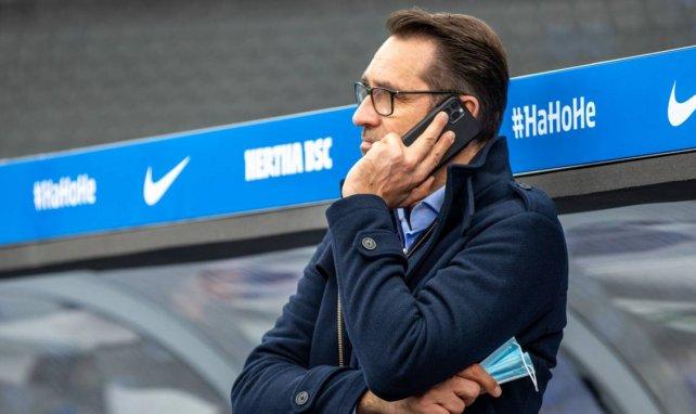 Hertha BSC: Rückendeckung für Labbadia