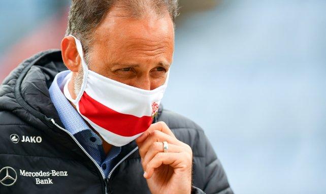 VfB verlängert mit Matarazzo