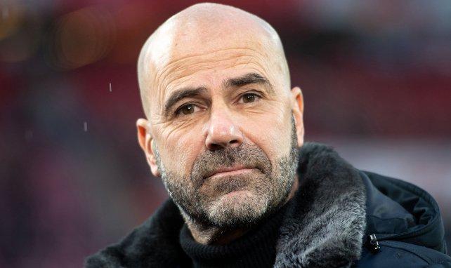 Peter Bosz ist Cheftrainer bei Bayer Leverkusen