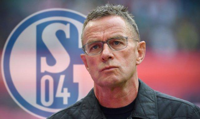 Ralf Rangnick war ein Kandidat bei Schalke 04