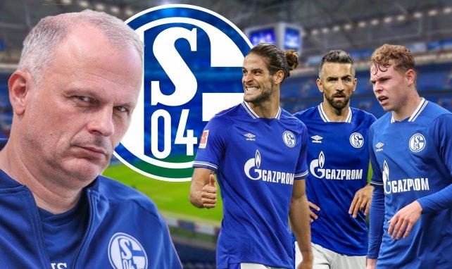 S04-Sportvorstand Jochen Schneider verpflichtete Paciência, Ibisevic und Ludewig (v.l.n.r.)