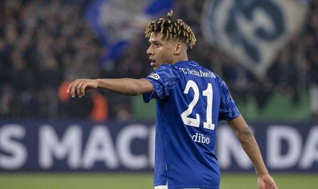 Kaufoption zu teuer: Neue Schalke-Pläne mit Todibo