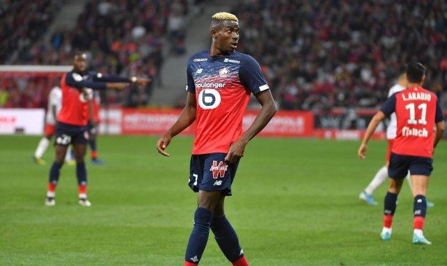 Lille bestätigt Osimhen-Abgang & David-Verhandlungen