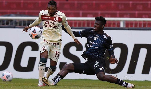 Independiente verabschiedet Pacho – Gladbach-Transfer steht bevor